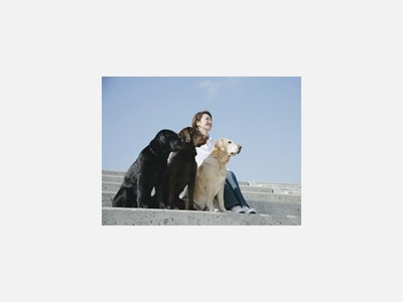 大切なペットの健康と飼い主様をサポート