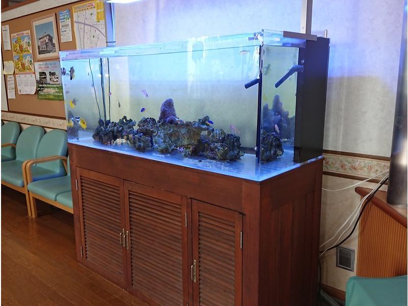 待合室内の熱帯魚の水槽