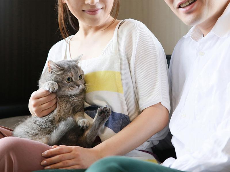 ペットとの暮らしをより楽しむためのリフォームや介護のための段差解消工事などもお任せください!
