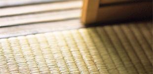 大野製畳有限会社ロゴ