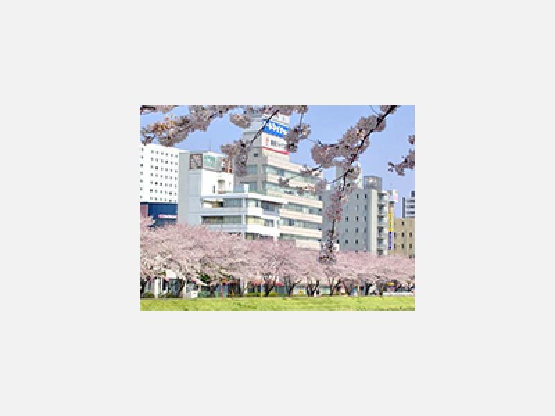 水戸市桜川・水戸駅より徒歩10分の公証役場です