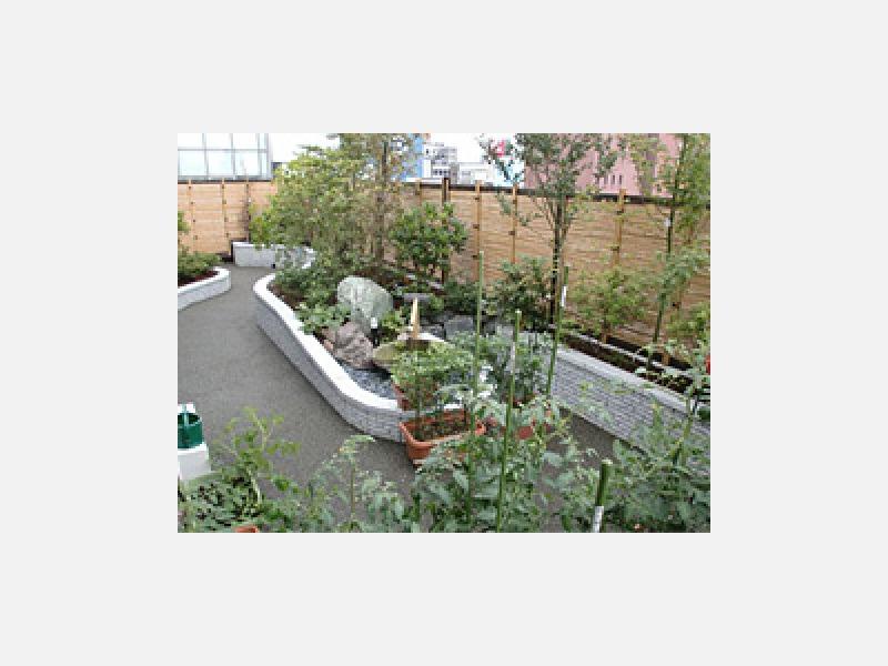 屋上庭園・多目的ホールを建設しました