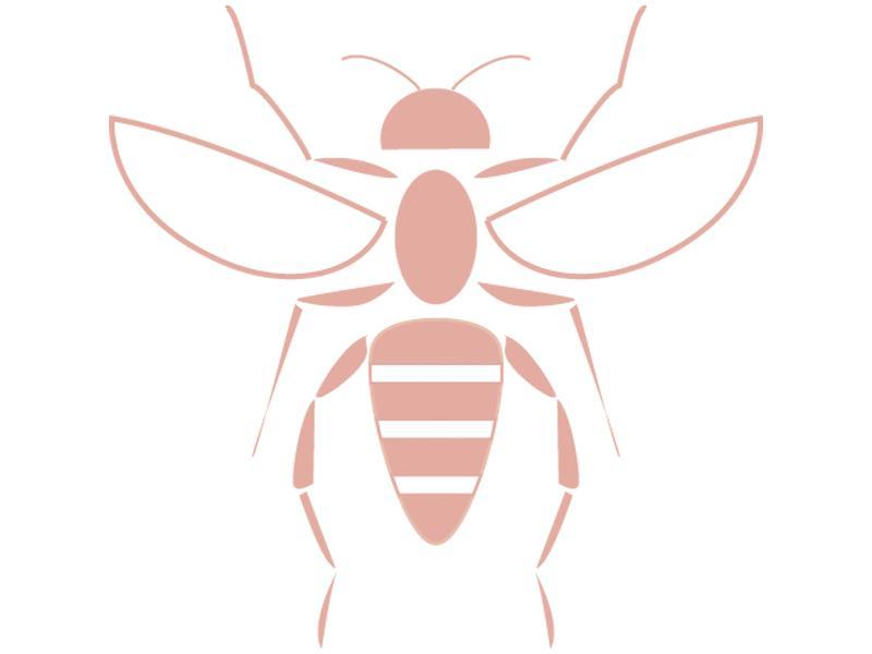 スズメバチの巣を見つけたらご連絡下さい