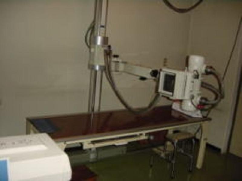 整形外科 リハビリテーション科 外科 内科 皮膚科