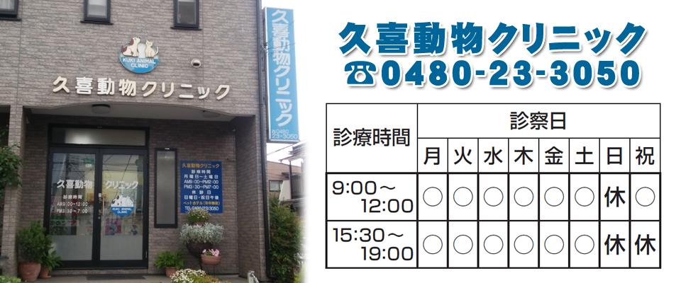 久喜市の動物病院 久喜駅 【久喜動物クリニック】