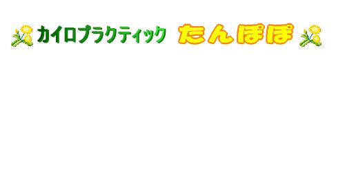 カイロプラクティックたんぽぽロゴ