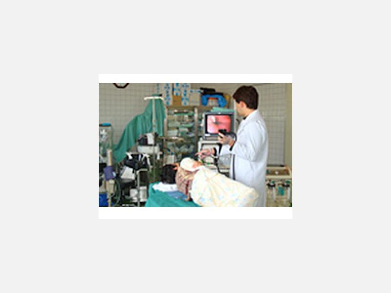 胃カメラ内視鏡検査