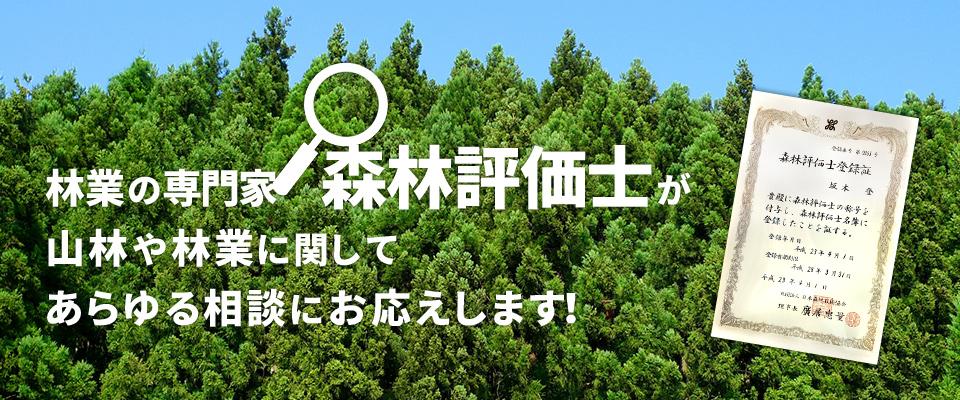 林業の専門家 森林評価士がお応えします