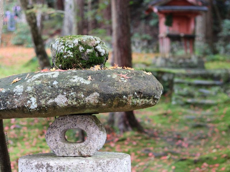 墓石の専門家「静岡ストーンクリーニングカンパニー」