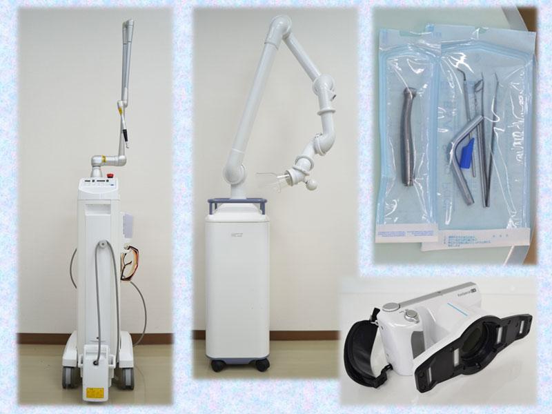 歯の定期健診を実施