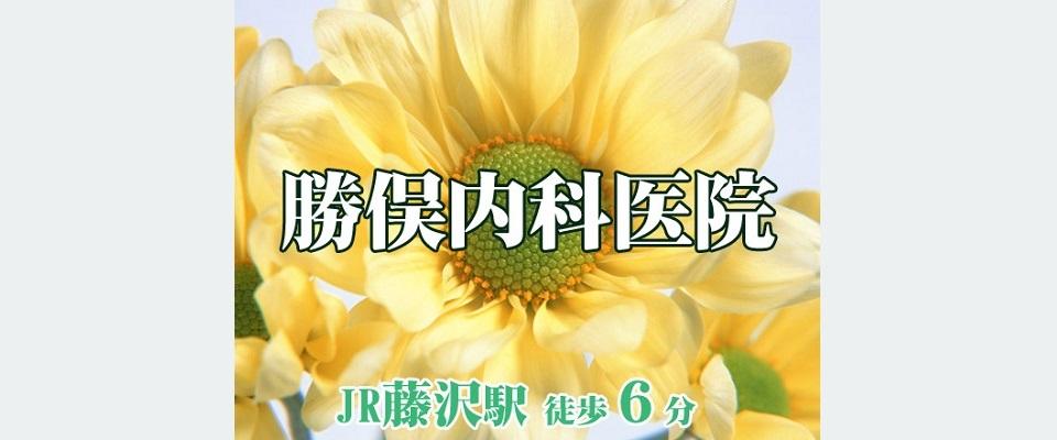 藤沢市・藤沢駅の内科 勝俣内科医院