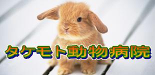 タケモト動物病院ロゴ