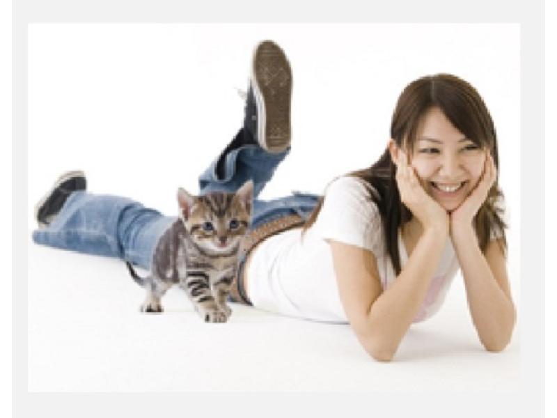 松戸市の動物病院 タケモト動物病院はペットホテルもございます