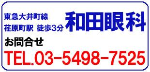 和田眼科ロゴ