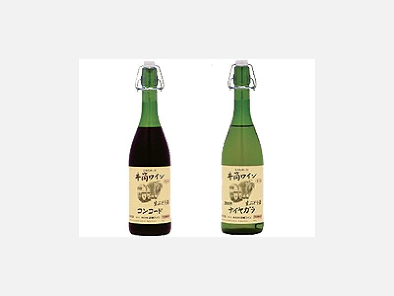 井筒無添加生にごりワイン 赤・白◆予約醸造品 毎年9/10