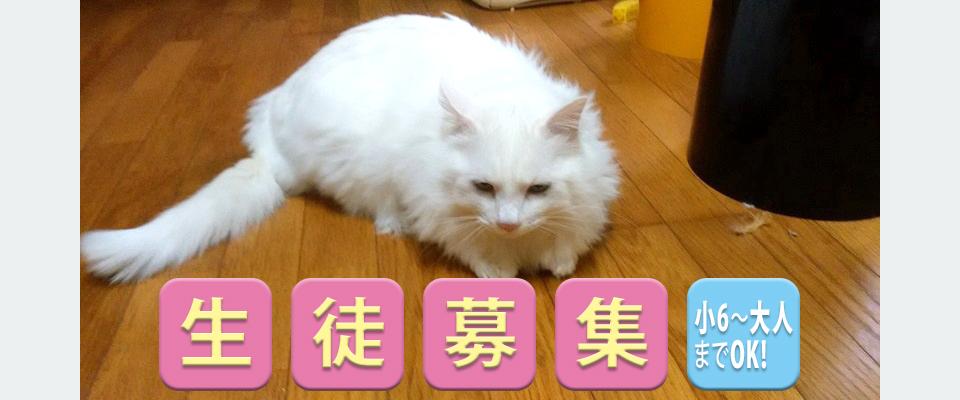 松江市のマンツーマン指導 タカハシ英語個人指導教室