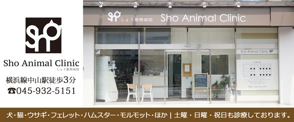 横浜市緑区・中山駅の動物病院 しょう動物病院