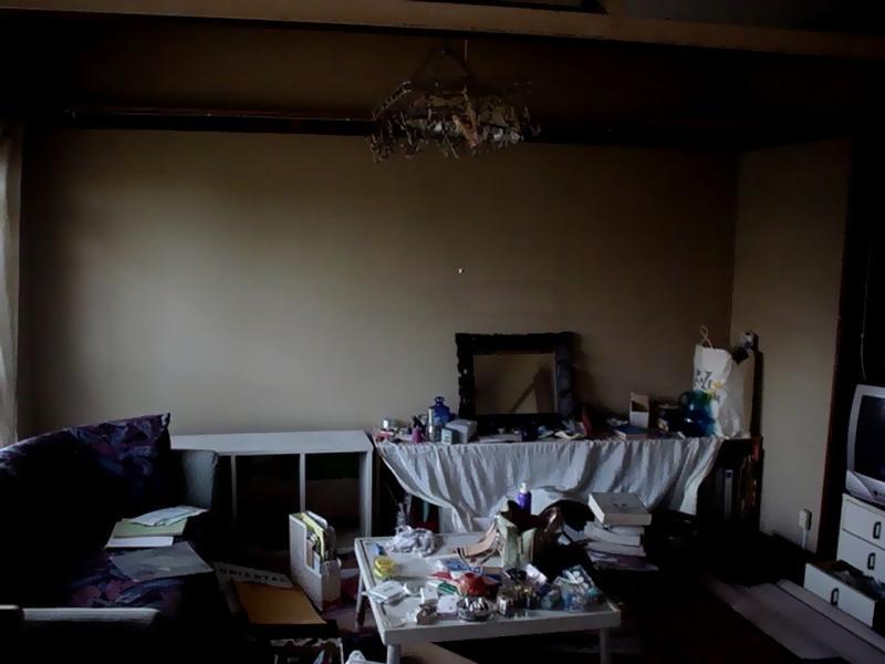 ゴミ屋敷、汚部屋、一軒家片付けサービス