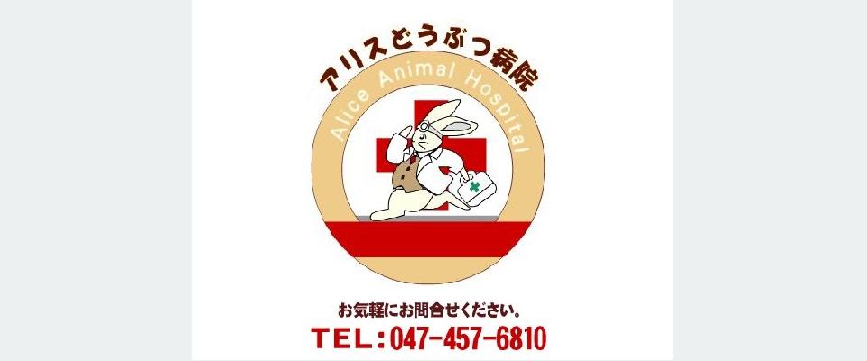 小室駅 動物病院 獣医師 休日診療 日・祝日診療