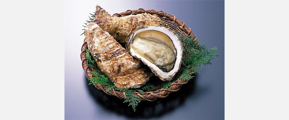 冬の味覚『地御前牡蠣』