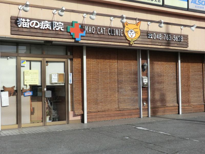 春日部市浜川戸 マオキャットクリニック