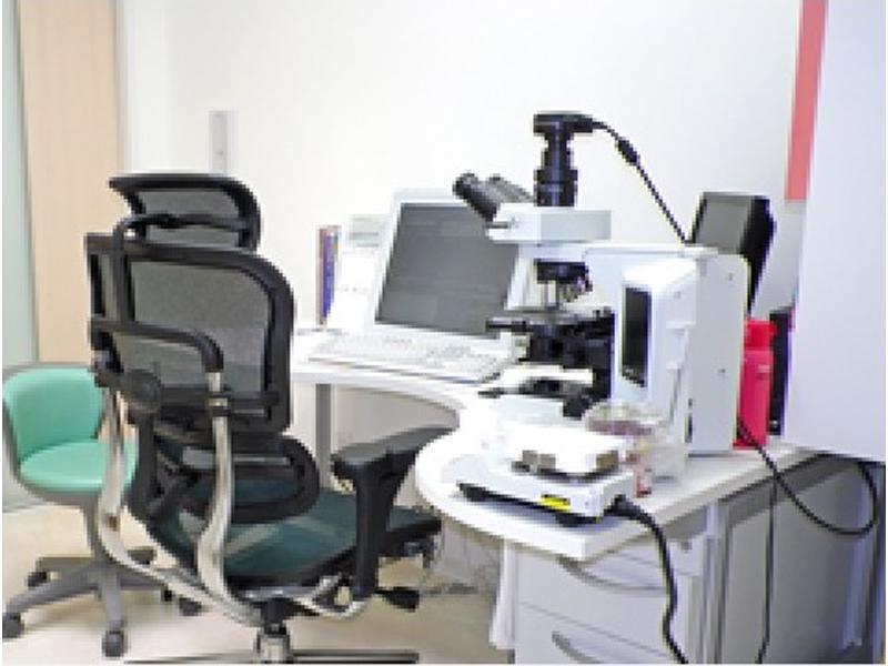 顕微鏡の画像がでるコンピューターシステム