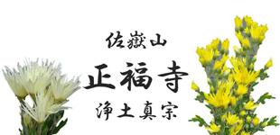 正福寺(浄土真宗)ロゴ