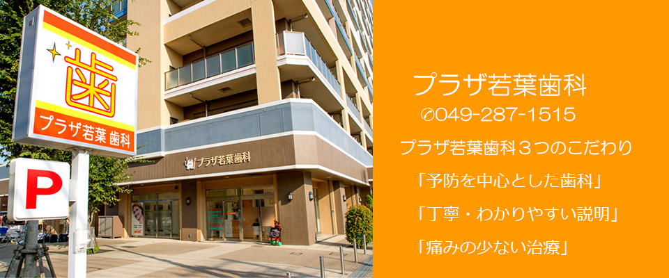 東武鉄道若葉駅西口近く 鶴ヶ島市のプラザ若葉歯科