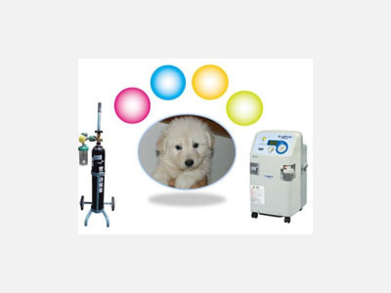 動物用在宅酸素療法 酸素ボンベ・酸素濃縮器