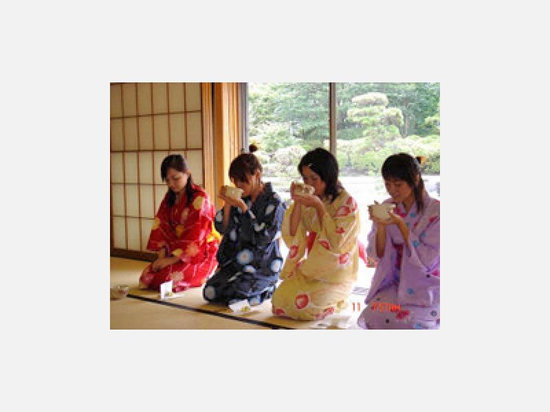 日本文化体験・茶道