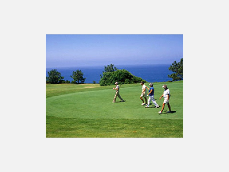 ゴルフにも…