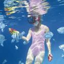 豊橋潜水センターロゴ