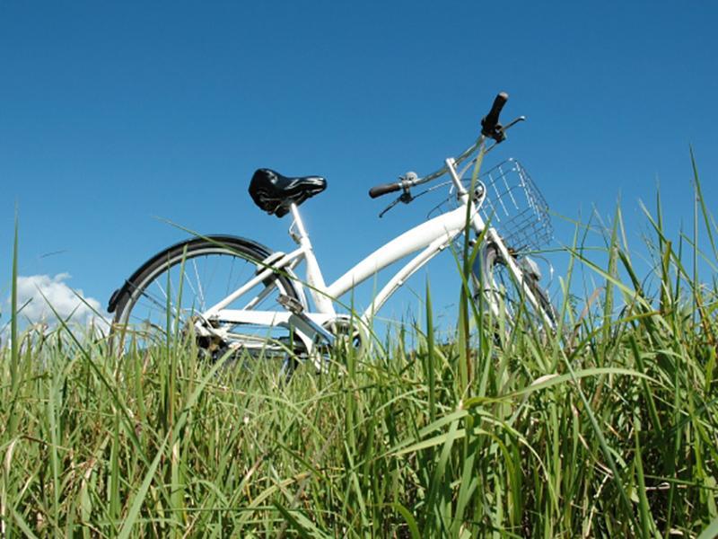 最新ファミリー自転車など品揃えも豊富