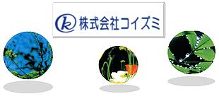 株式会社コイズミロゴ