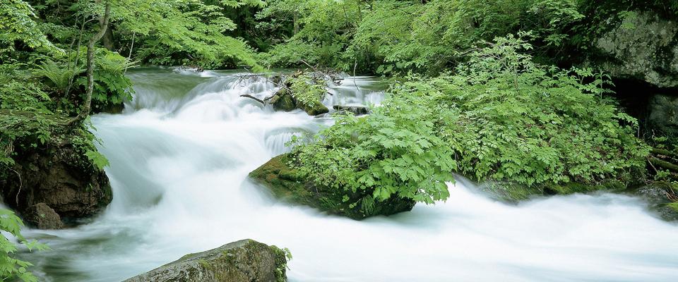むつ市 山間の静かな温泉宿 岡村旅館