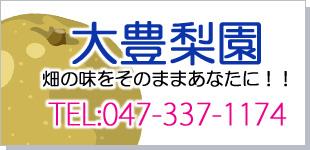 大豊梨園ロゴ
