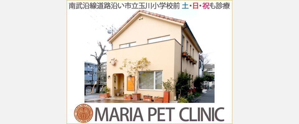 川崎市中原区 動物病院犬猫 マリアペットクリニック