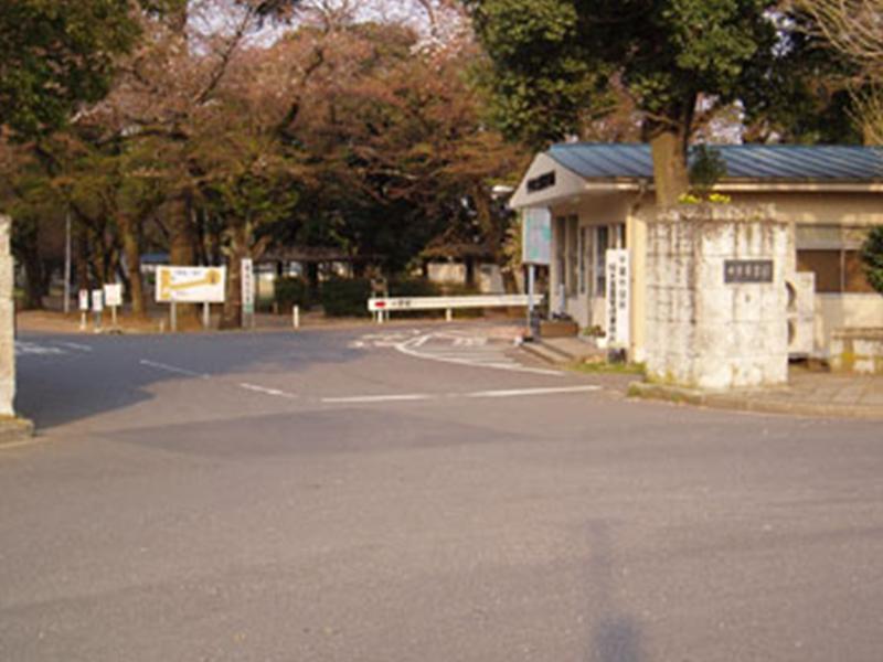 千葉市営桜木霊園