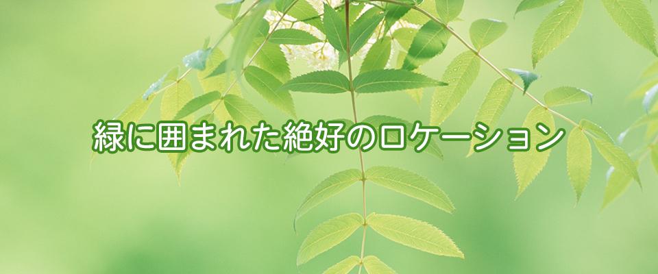 横浜市青葉区 介護サービス デイサービス 通所介護