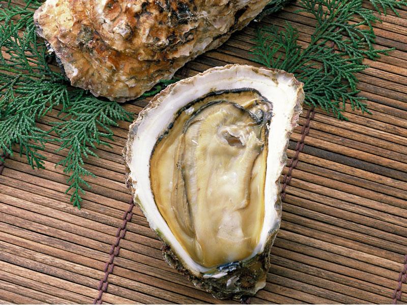 播州室津港の牡蠣