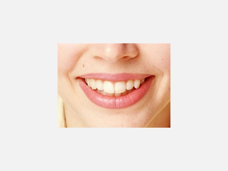 歯科、小児歯科、歯科口腔外科、矯正歯科