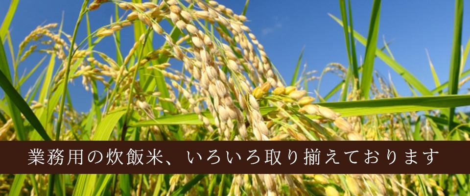 横浜市鶴見区 矢向駅の業務用米 炊飯米販売