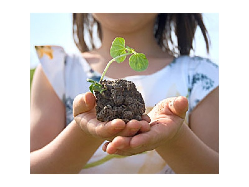 ゴミ処理 廃棄物 資源回収 引越ゴミ リサイクル