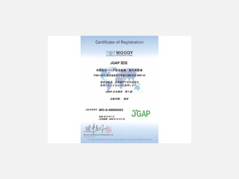 GLOBAL GAP・JGAP認証取得