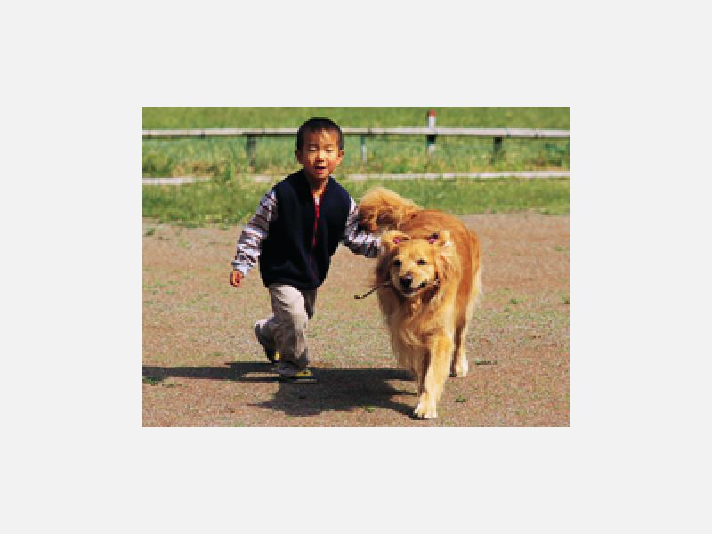 電話予約可・動物医療保険取扱 世田谷動物医療センター