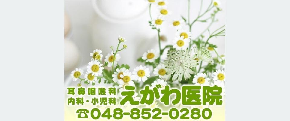さいたま市中央区・与野本町駅徒歩3分の耳鼻咽喉科