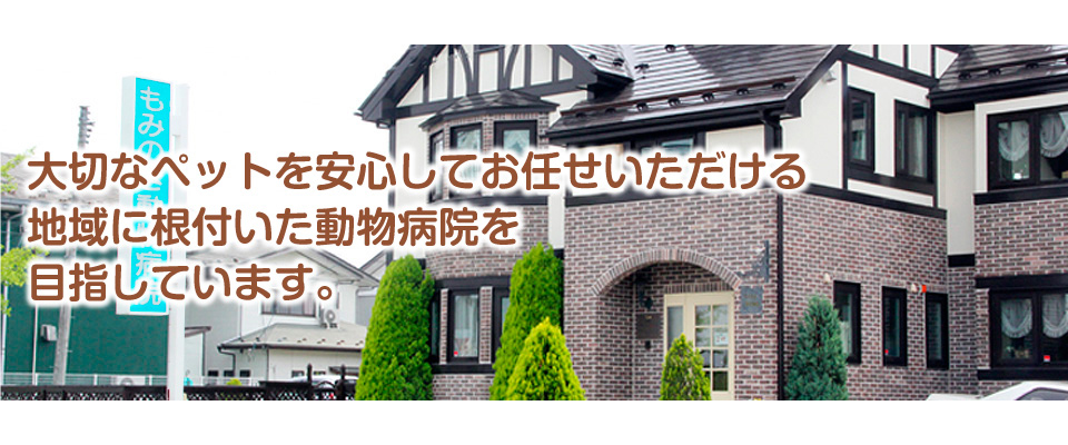 仙台市の動物病院 土日も診療 もみのき動物病院