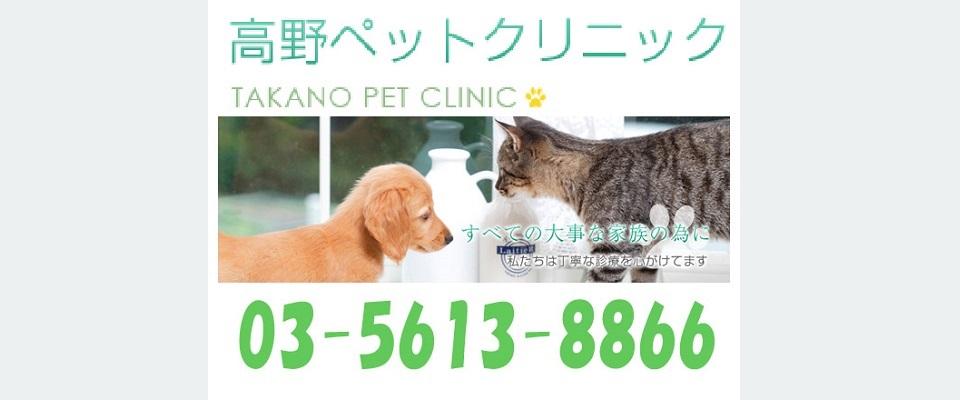 足立区 犬 猫 動物病院 トリミング たかのペット