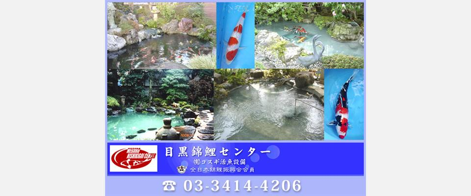 錦鯉販売、池防水・水漏れ工事