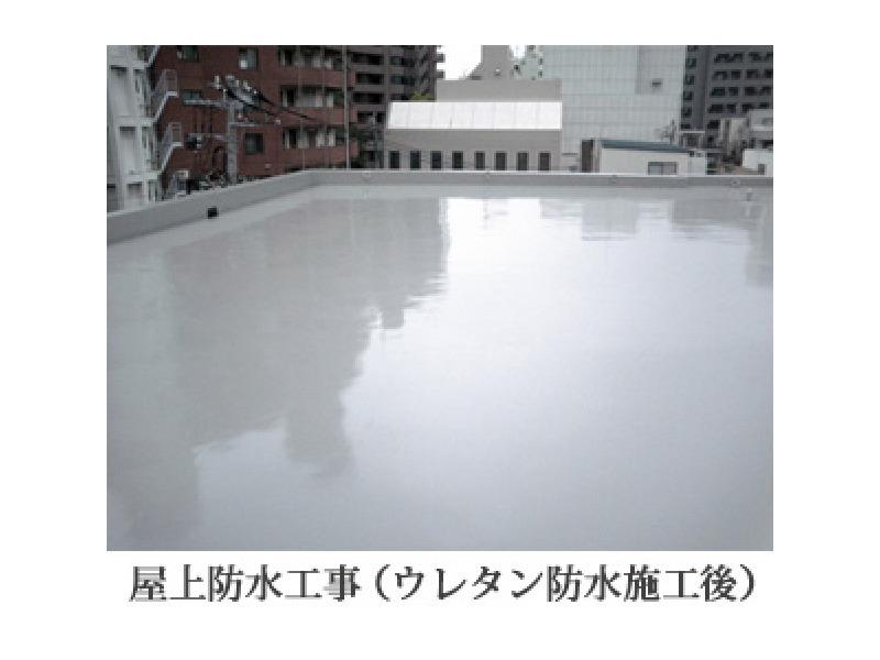 文京区 防水工事 内外装工事 塗装工事 トーヨー科建株式会社